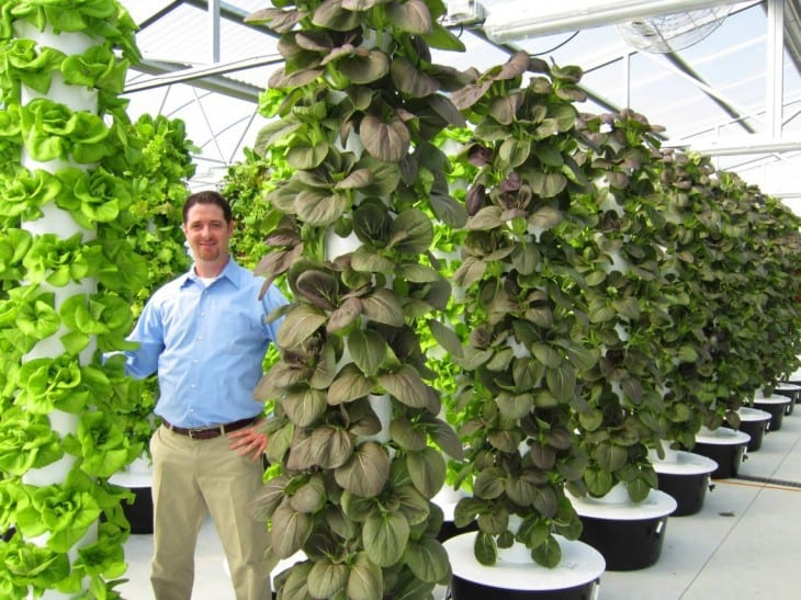 Attractive Aquaponic Tower Garden Designs