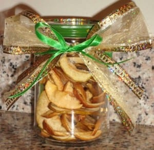 DIY Holiday Gifts: Dehydrated Fruit Jars