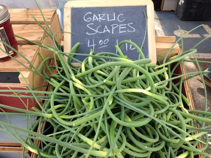 Spring Garlic Scapes