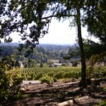 Willamette Wineries Wow Wine Lovers