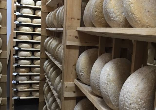 willamette-valley-cheese-aging-room