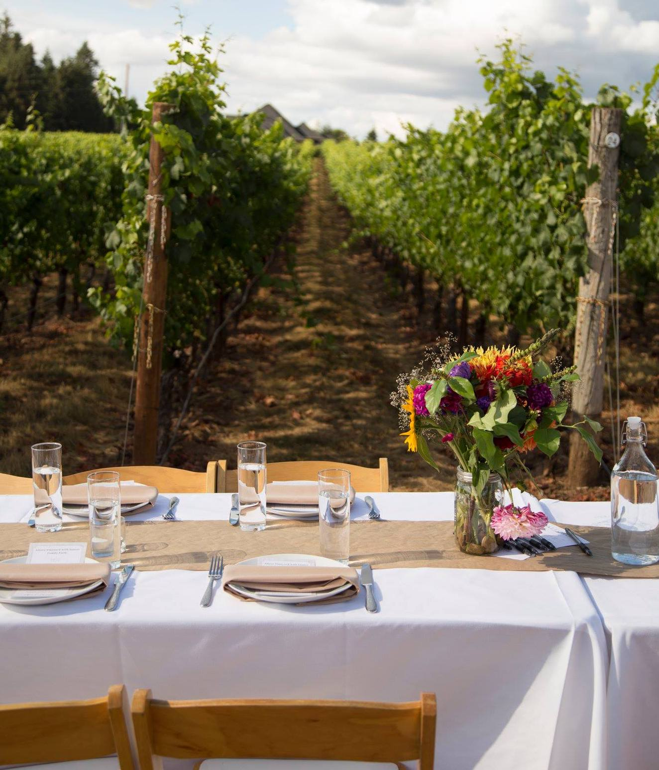 image of field and vine table in vineyard