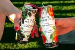 wild roots spirits canned cocktails