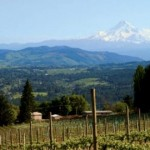 Columbia River Gorge Wineries: Touring the Hood River Fruit Loop